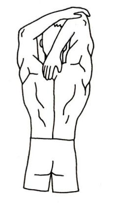 diagram of stretching to warm up shoulders